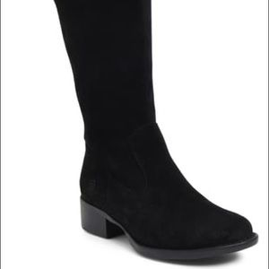 Born Cotto Tall boot black suede, 7.5m